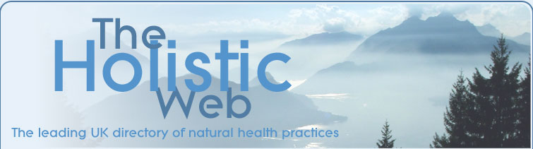 The Holistic Web